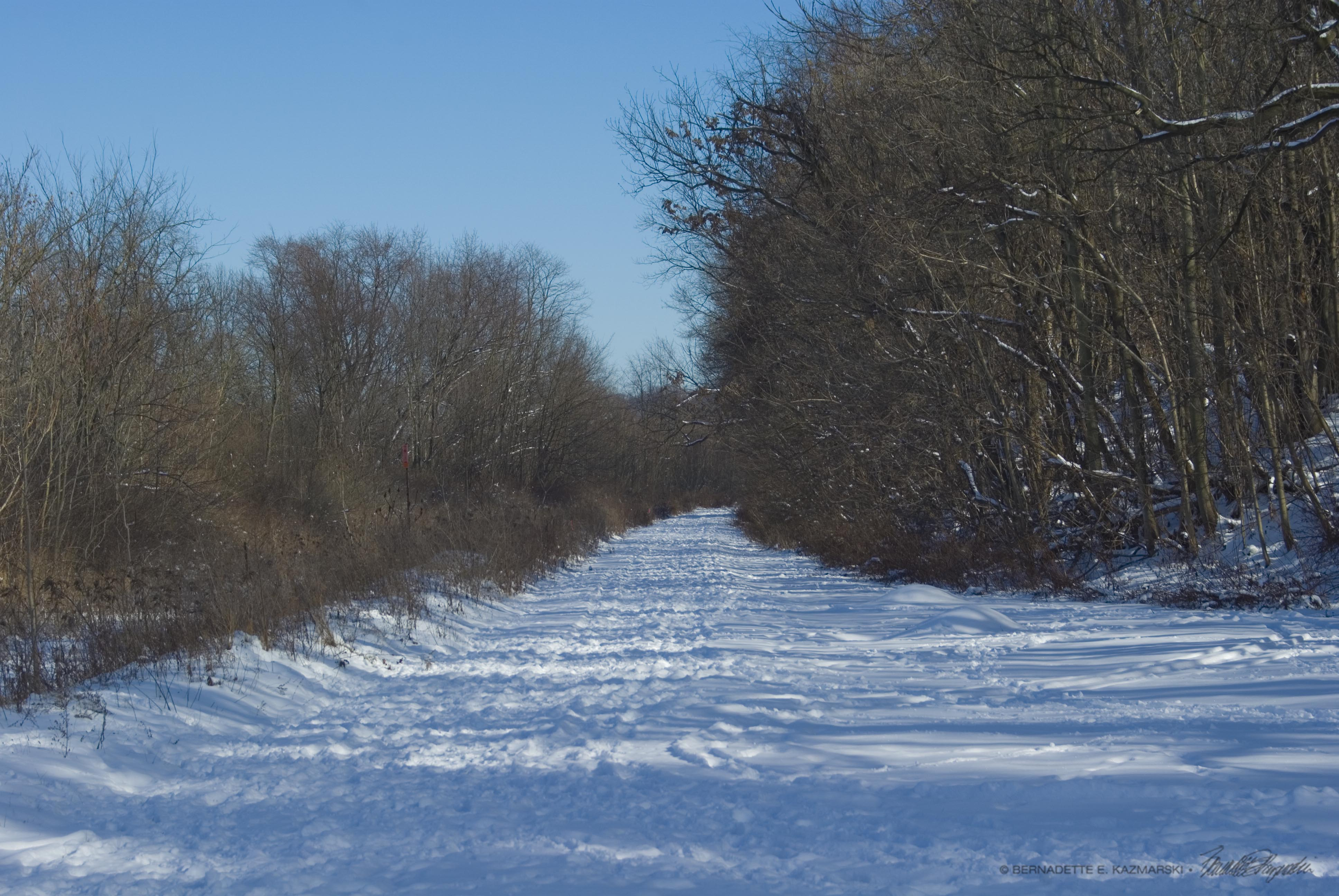 December on the Panhandle Trail